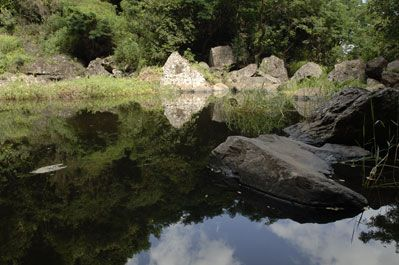 Bassin Vital - Randonnée ( Moyens marcheurs ) Depuis la nationale, prenez la direction de Saint-Paul / Bois de Nèfles / Savanna...