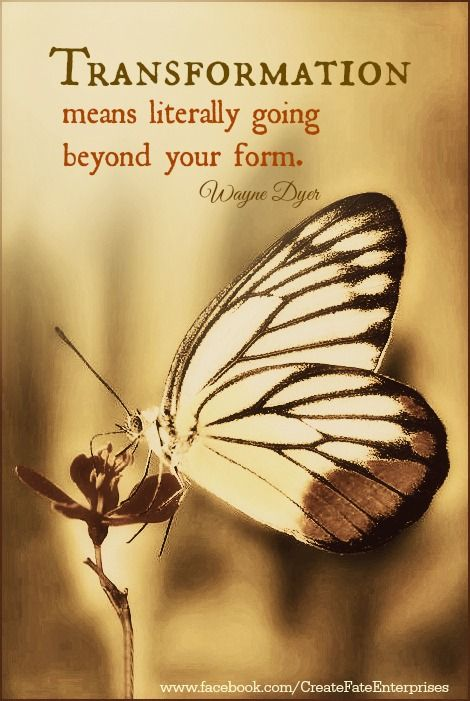 letting go of where and who you were - in order to became who you really are - a free spirit of life .... here to transcend the material world we live.....hope you can make a difference...