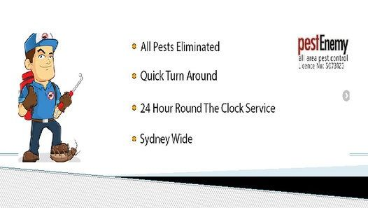 http://www.pestenemy.com.au/service-area/pest-control-services-glenfield/ - We are the experts in pest control services in Glenfield and strive to provide you with the most outstanding services of pest control affordably.