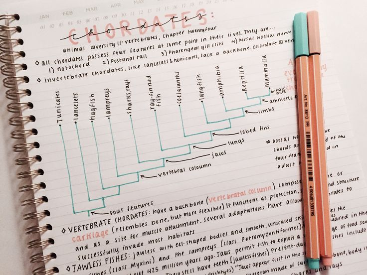 Colour-coded highlighting | GearFire - Tips for Students