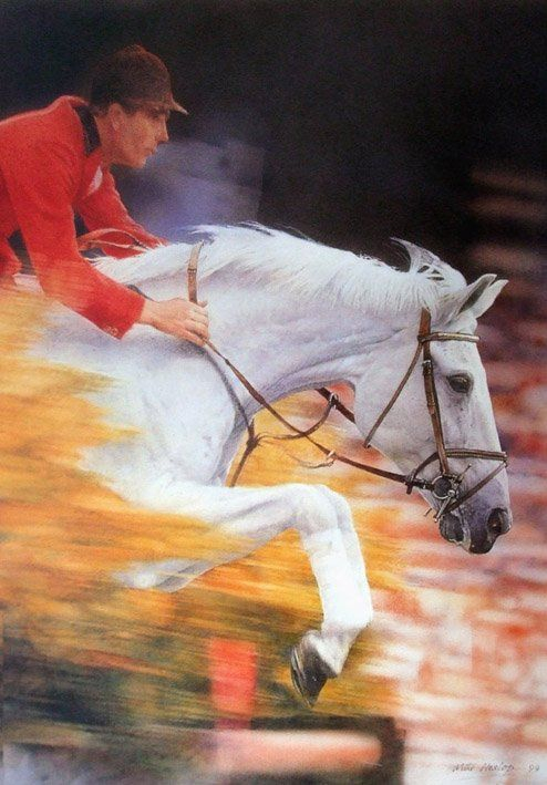 Gorgeous horse jump picture, clear pic of white horse jumping, neat photography effects with blurred background making the horse look like he is moving really fast.