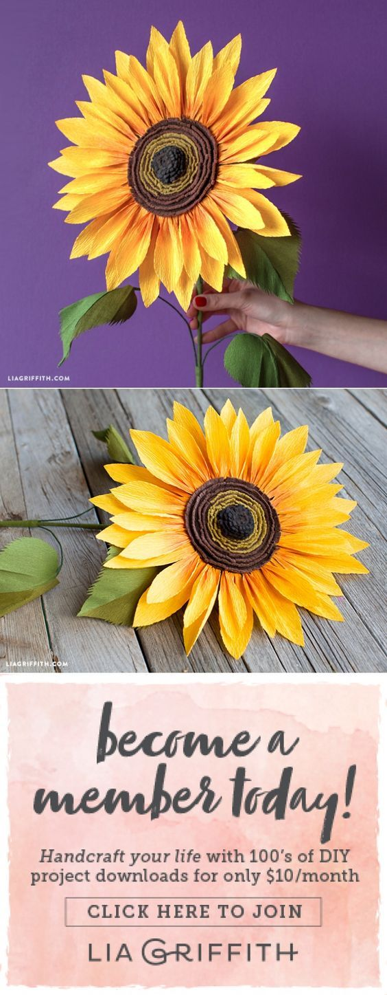Jumbo Crepe Paper Sunflower - www.liagriffith.com #diyinspiration #diyproject #diyprojects #diyidea #diyideas #paperflower #paperflowers #paperart #papercut #feltcraft #crepepaperrevival #madewithlia
