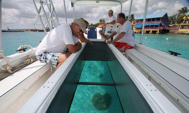 Image Result For Puerto Rico Glass Bottom Boat Glass Bottom Boat Puerto Puerto Rico