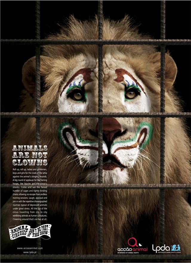 ANIMALS ARE NOT CLOWNS....Ad for lions in circuses.