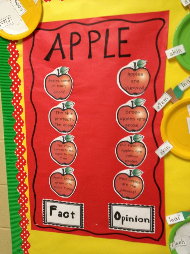 Apple fact or opinion