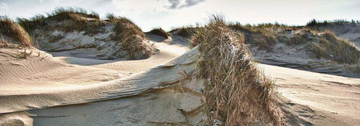 Urlaub auf Norderney & Juist   fewos-ostfriesland.com