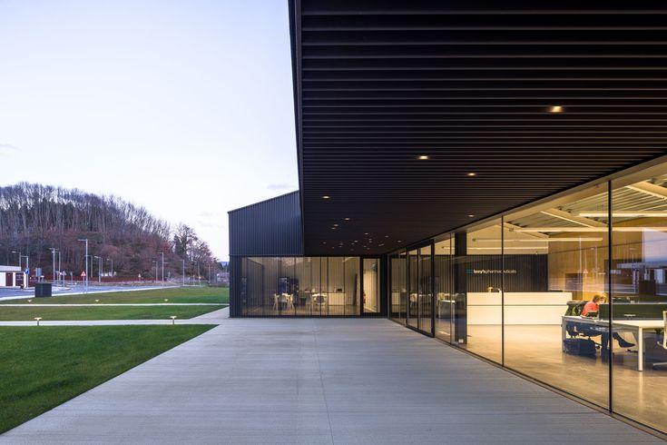 Gallery of Lozy's Pharmaceuticals Factory / GVG Estudio + Vaillo-Irigaray - 17