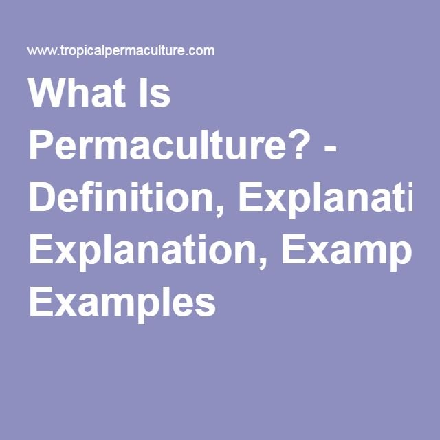 What Is Permaculture? - Definition, Explanation, Examples