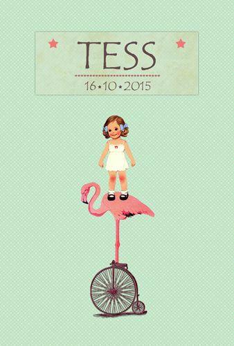 Geboortekaartje Tess - voorkant - Pimpelpluis - https://www.facebook.com/pages/Pimpelpluis/188675421305550?ref=hl (# meisje - flamingo - fiets - dieren - lief - origineel)
