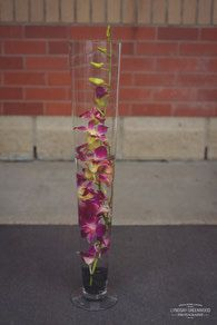 Only Orchids, Large Underwater Orchid Designed by Best Buds Flower Company