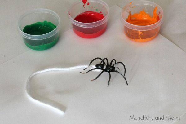 spider webs-3