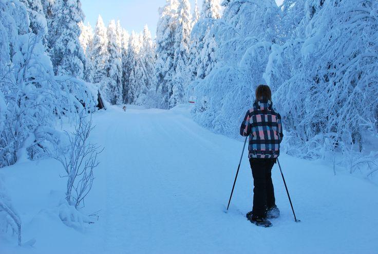 Snowshoeing in Syöte, Finland