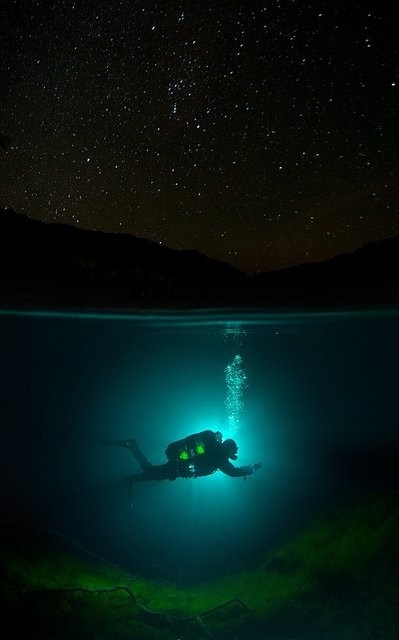 .Underwater Photos, Under The Stars, Blue, Scubas Diving, Underwater Photography, Sea, Night Time, Night Diving, Night Sky