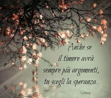 Anche se il timore avrà sempre più argomenti, tu scegli la speranza. -Seneca-/ Aunque el miedo siempre tendrá más argumentos, tú elige la esperanza.