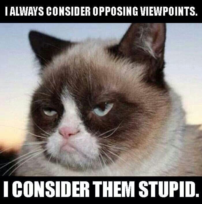 Grumpy cat humor...