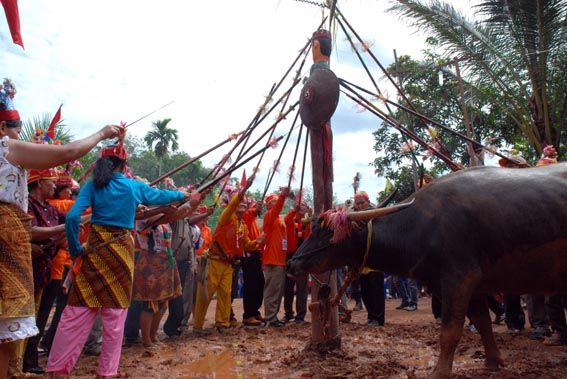 Tiwah, funeral ceremony of Dayak people