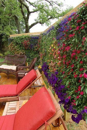 ms de ideas increbles sobre jardines verticales en pinterest paredes suculentas de jardn jardines de pared y muro de jardn vertical