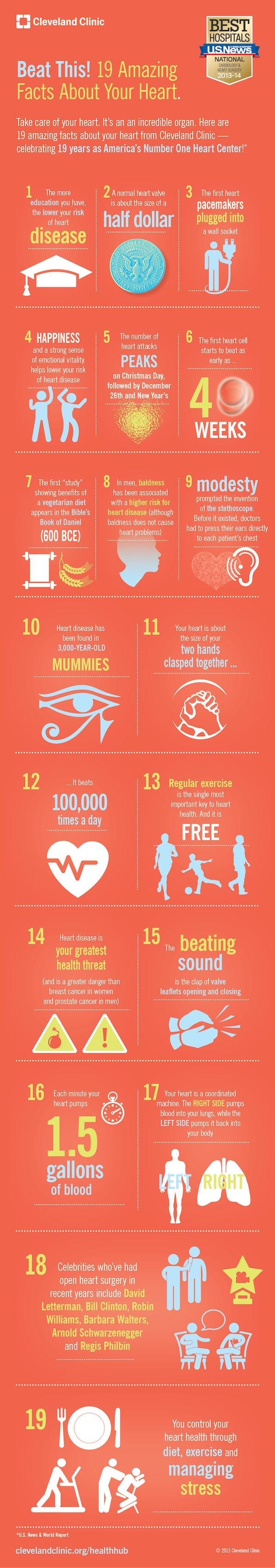 19 amazing facts you didn't know about your #heart.