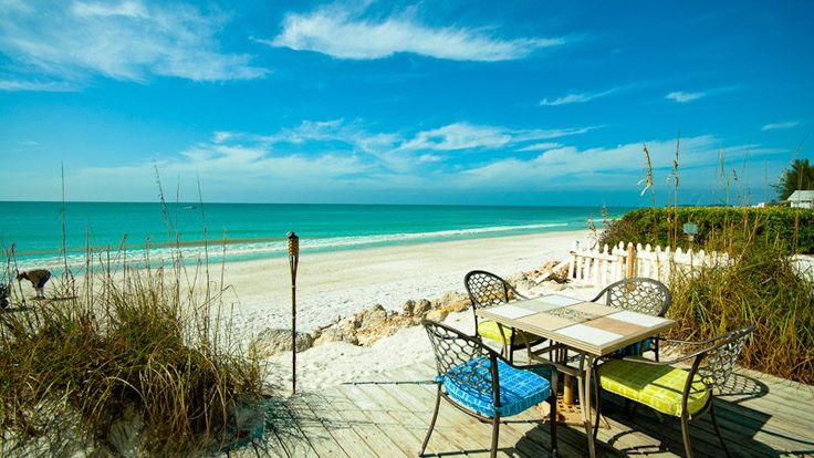 192 Best Beach Combing Anna Maria Island Images On