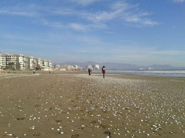 La mejor playa de la vida!!, La Serena - CHILE