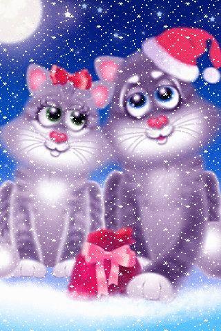 Котики с подарком - анимация на телефон №1270963