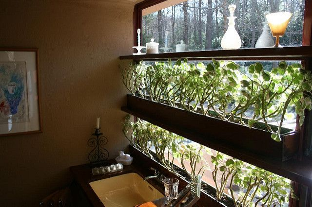 Falling Water - toilet glass shelf | Falling water house or … | Flickr