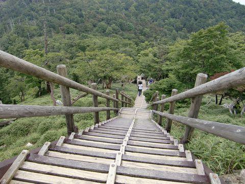 三重、奈良、和歌山の三県にまたがる吉野熊野国立公園にある大台ケ原(おおだいがはら)は、日本百名山にも数えられ、屋久島と並ぶ日本でも有数の雨の多い地帯です。そんな気候だからこそ、多くの自然が残っており、天気がよければ遠く離れた富士山だって見えることがあるのです。さぁ、天気予報をしっかり確認していれば大丈夫!大自然が残る大台ケ原へハイキングに行ってみませんか。