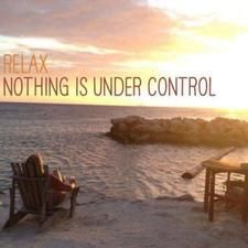Relax, nothing is under control... the Holistic Helper's guide to dealing with the unexpected | New Zealand News UK