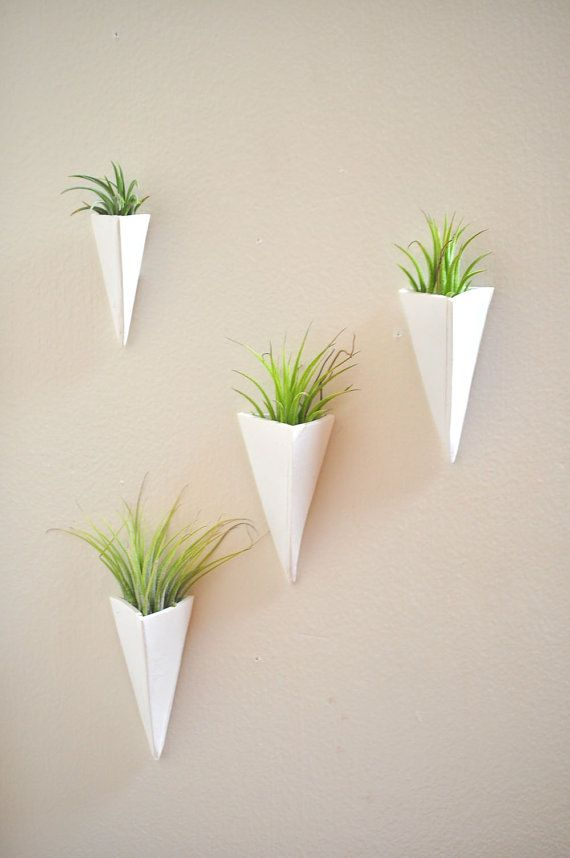 Trending Wall Mount Mini Air Plant Planter White and ...