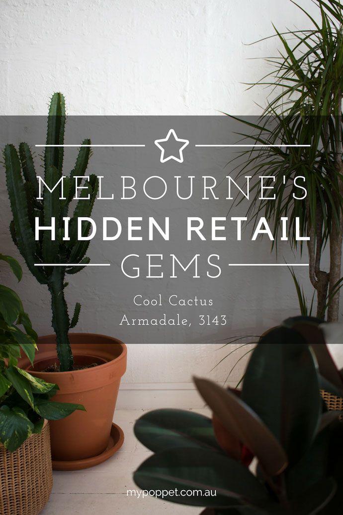 Melbourne's Hidden Retail Gems – Cool Cactus, Armadale, 3143