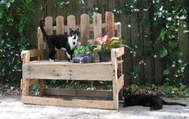 made from wooden pallets: Backyard Plants, Pallets Benches, Wooden Pallets, Pallets Furniture, Recycled Wood, Pallets Ideas, Wood Pallets, Pallets Projects, Gardens Benches