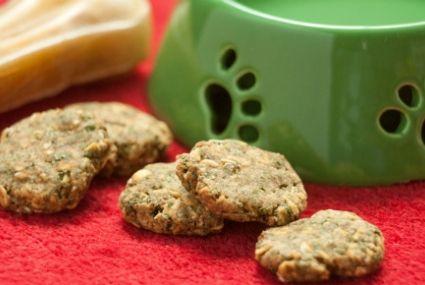 Homemade Peanut Butter and Banana Dog Treats | Whole Foods Market