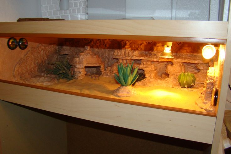 Home made vivarium - dessert theme - Geckos Unlimited