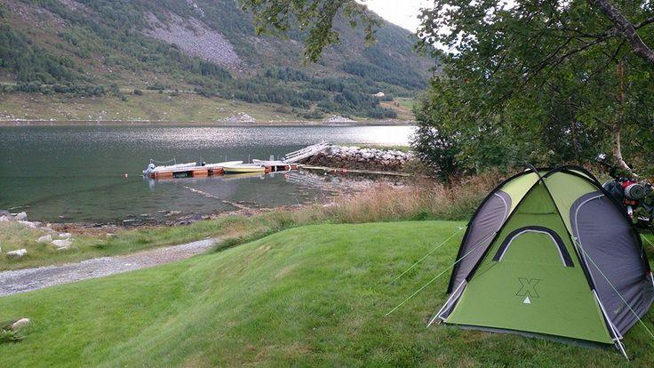 Spanie na dziko w Norwegii