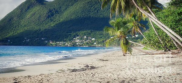 Sea Coast. Small town at the Caribbean coast of Martinique. Panoramic photo print. Big Size Print. Large size canvas for interior by cinema4design. #largesize #bigsize #canvasprint