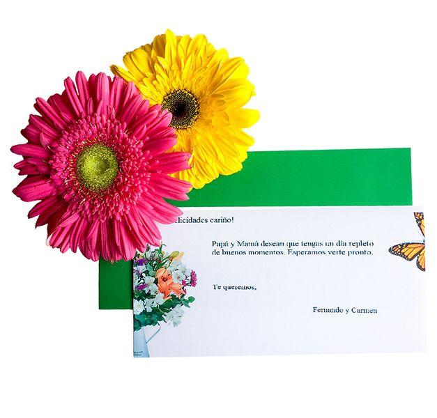 Enviar Ramo Rosas Blancas - Enviar flores a domicilio - floresfrescas.com