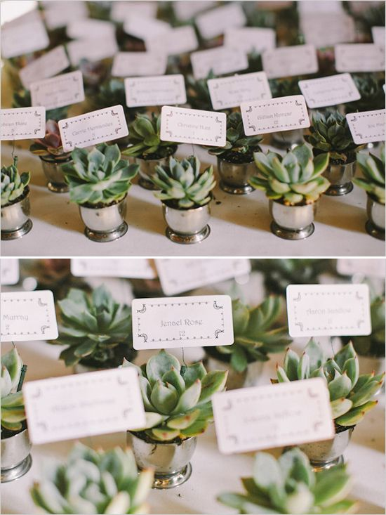 Opt for this 2-for-1 succulent without feeling like you're settling. Guests start with an escort card and end with a favor.     via - http://www.weddingchicks.com/2014/03/17/central-coast-summer-wedding/