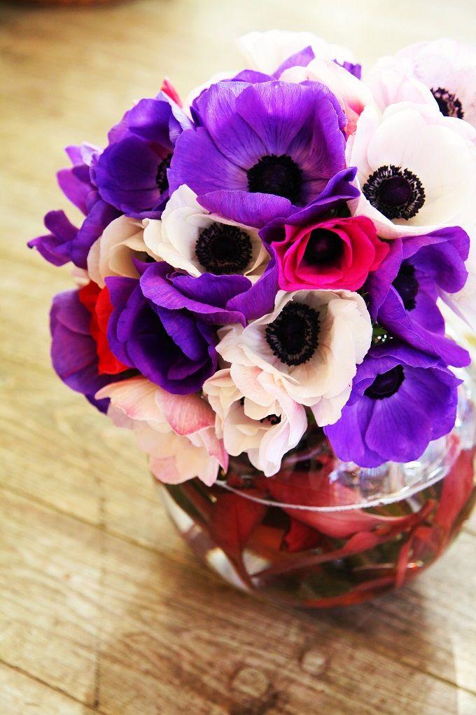 アネモネ/花どうらく/花屋/http://www.hanadouraku.com/bouquet