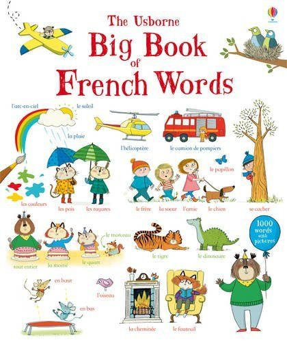 Big book of french words.
