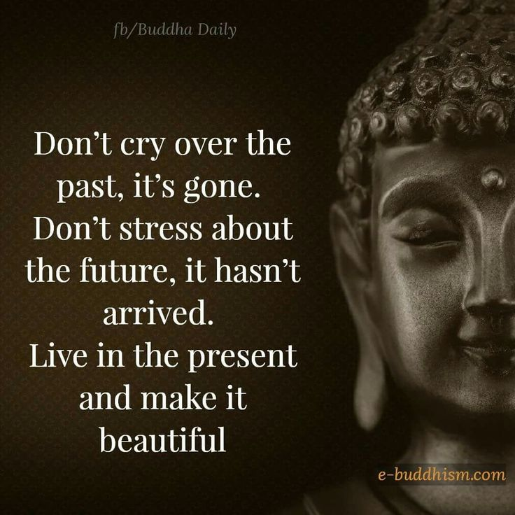 Fill Your Life With Experiences Not Things Quote: Best 25+ Buddha Sayings Ideas On Pinterest