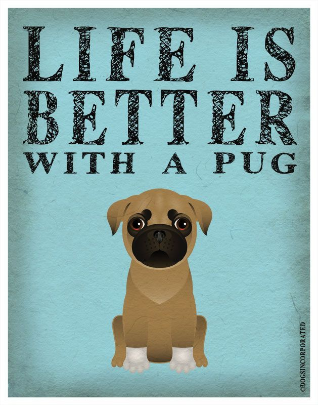 Life is Better with a Pug. Wise words about dogs. wall plaque for dog people.
