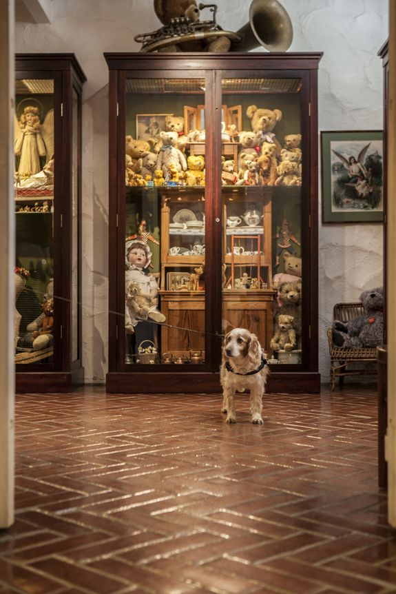 Dog visitor in the Toy Museum in Suomenlinna