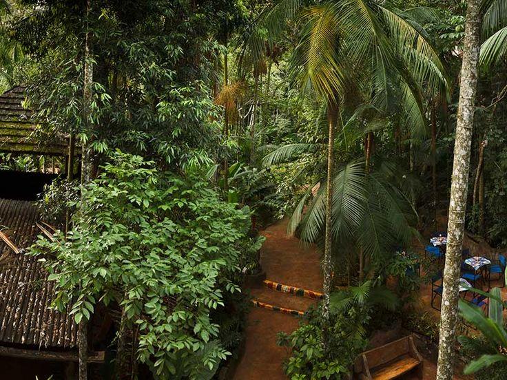 ¿Buscando un #AñoNuevo diferente? ¡Tenemos un propuesta especial para usted! En el corazón de la #Selva Misionera, inmerso en la #naturaleza: el perfecto escenario para hacer una pausa, reencontrarse con uno mismo y prepararse para recibir el año nuevo. Bajo las estrellas, a la luz de las velas, rodeados por la selva y bañados de #paz. #acrossargentina #vacaciones #viaje #añonuevo #enfamilia #naturaleza #animales #aventura #selva #descanso