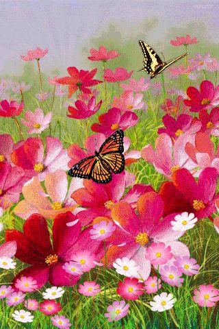 Jardin con mariposas
