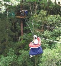 Tsitsikamma canopy tour...South Africa - BelAfrique your personal travel planner - www.BelAfrique.com