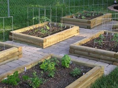 Raised Garden Beds Made From Landscaping Timbers In The 400 x 300
