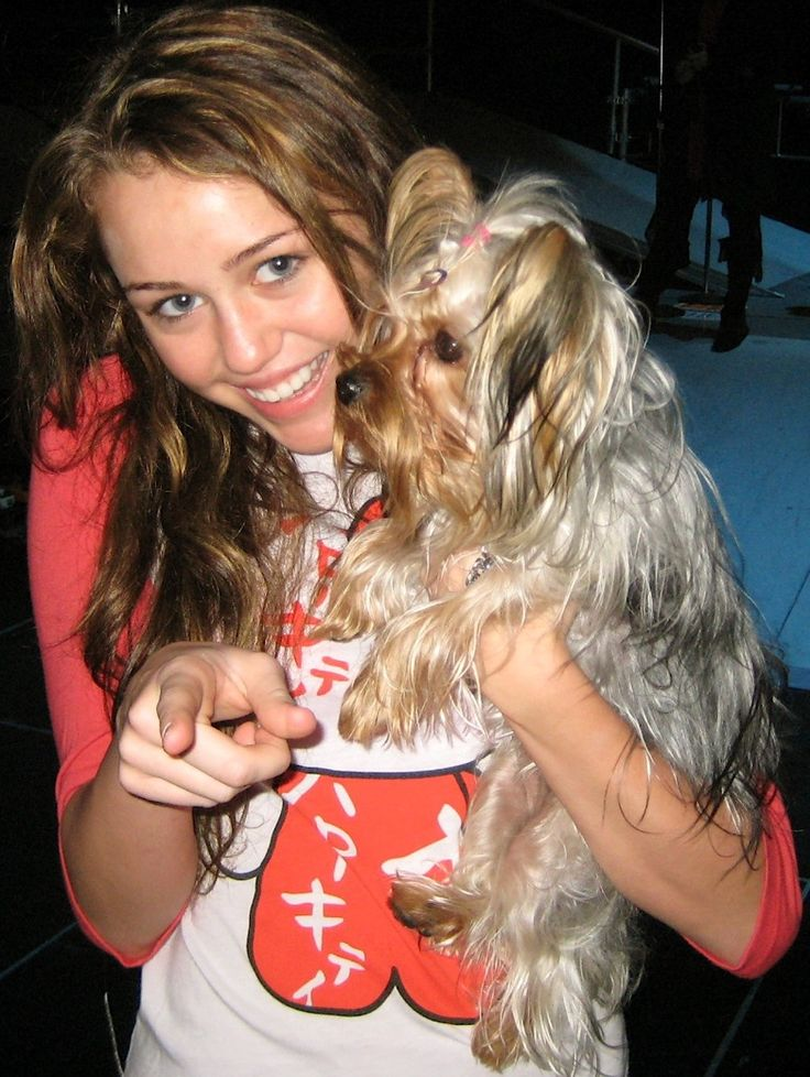 Miley Cyrus crop - Miley Cyrus - Wikipedia, the free encyclopedia
