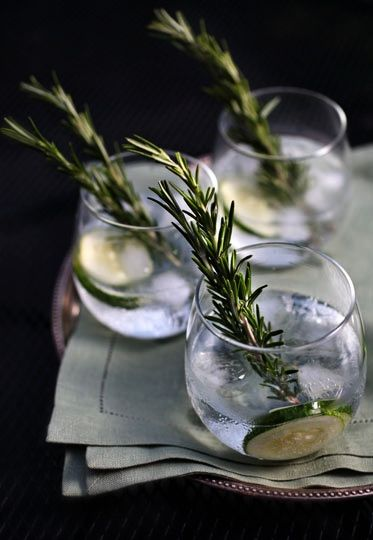 Cucumber Rosemary Gin & Tonic