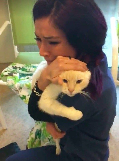 A woman never lost faith in finding her cat, in fact she searched for him for two years. She eventually found the friend with whom she spent 12 years together. The cat is named Diego and had disapp…