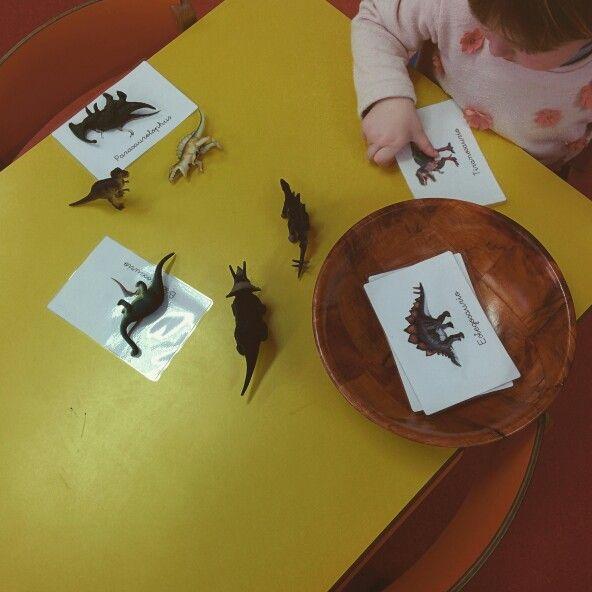 Emparejando dinosaurios